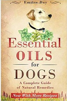 the dog and lemon guide